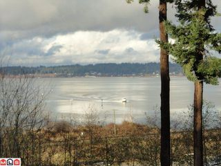 Photo 6: 12603 CRESCENT Road in Surrey: Crescent Bch Ocean Pk. House for sale (South Surrey White Rock)  : MLS®# F1128336