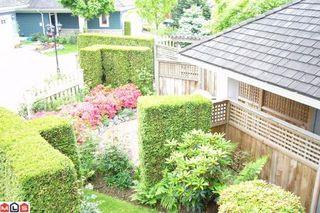 Photo 8: # 62 15055 20TH AV in Surrey: Condo for sale (White Rock)  : MLS®# F1114165