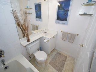 """Photo 14: 308 4768 53RD Street in Ladner: Delta Manor Condo for sale in """"SUNNINGDALE IV"""" : MLS®# V1096503"""