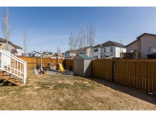Photo 30: 241 Springmere Way: Chestermere House for sale : MLS®# C4005617