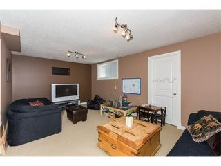 Photo 25: 241 Springmere Way: Chestermere House for sale : MLS®# C4005617
