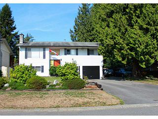 Photo 1: 11731 194A Street in Pitt Meadows: South Meadows House for sale : MLS®# V1138915