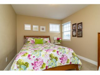 Photo 21: 21082 83B Avenue in Langley: Willoughby Heights House for sale : MLS®# R2038203