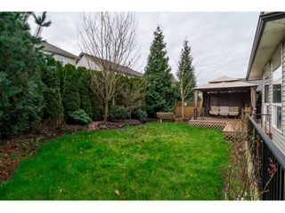 Photo 32: 21082 83B Avenue in Langley: Willoughby Heights House for sale : MLS®# R2038203