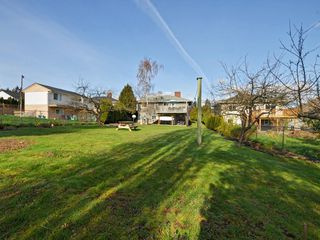 Photo 21: 2969 Austin Ave in VICTORIA: SW Gorge House for sale (Saanich West)  : MLS®# 724943