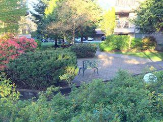 "Photo 2: D205 40160 WILLOW Crescent in Squamish: Garibaldi Estates Condo for sale in ""Diamond Head Place"" : MLS®# R2054958"