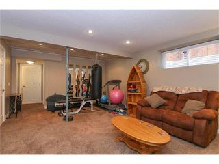 Photo 30: 100 CHAPARRAL VALLEY Terrace SE in Calgary: Chaparral House for sale : MLS®# C4086048