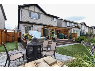 Photo 36: 100 CHAPARRAL VALLEY Terrace SE in Calgary: Chaparral House for sale : MLS®# C4086048