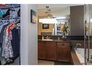 Photo 23: 100 CHAPARRAL VALLEY Terrace SE in Calgary: Chaparral House for sale : MLS®# C4086048