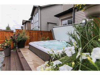 Photo 44: 100 CHAPARRAL VALLEY Terrace SE in Calgary: Chaparral House for sale : MLS®# C4086048