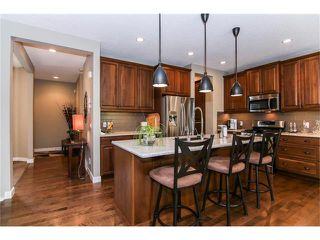 Photo 20: 100 CHAPARRAL VALLEY Terrace SE in Calgary: Chaparral House for sale : MLS®# C4086048