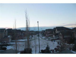 Photo 39: 258 CRANSTON Drive SE in Calgary: Cranston House for sale : MLS®# C4092400