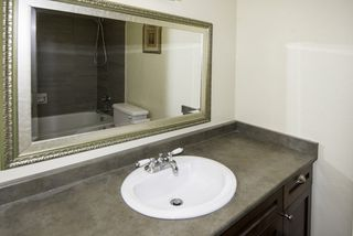 Photo 12: 101 1315 W 7TH Avenue in Vancouver: Fairview VW Condo for sale (Vancouver West)  : MLS®# R2162340