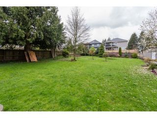Photo 19: 9939 124TH Street in North Surrey: Home for sale : MLS®# F1435702