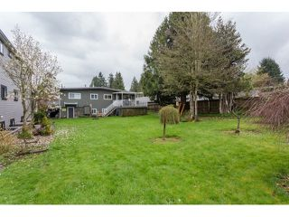 Photo 2: 9939 124TH Street in North Surrey: Home for sale : MLS®# F1435702