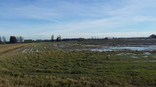 Photo 1: 5905 64 Street in Ladner: Land Commercial for sale : MLS®# C8003919