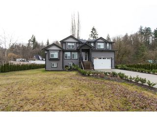 Photo 1: 3143 ELDRIDGE Road in Abbotsford: Sumas Mountain House for sale : MLS®# R2240486