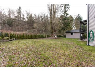 Photo 20: 3143 ELDRIDGE Road in Abbotsford: Sumas Mountain House for sale : MLS®# R2240486