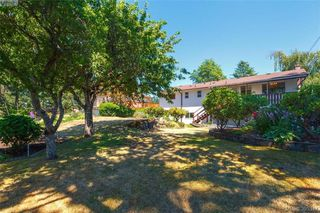 Photo 16: 4188 Bracken Ave in VICTORIA: SE Lake Hill House for sale (Saanich East)  : MLS®# 792670