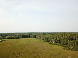 Photo 8: 14-51315 Rge Road 262: Rural Parkland County Rural Land/Vacant Lot for sale : MLS®# E4126103