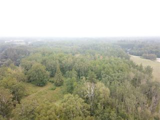 Photo 4: 14-51315 Rge Road 262: Rural Parkland County Rural Land/Vacant Lot for sale : MLS®# E4126103