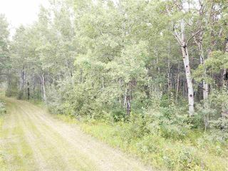 Photo 7: 14-51315 Rge Road 262: Rural Parkland County Rural Land/Vacant Lot for sale : MLS®# E4126103