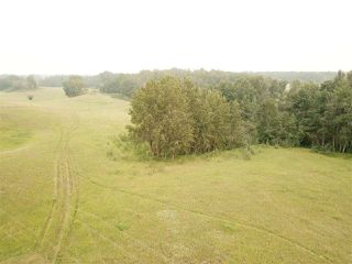 Photo 6: 14-51315 Rge Road 262: Rural Parkland County Rural Land/Vacant Lot for sale : MLS®# E4126103