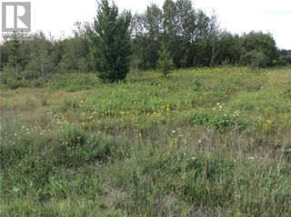 Photo 5: 4360 Regional Road 35 in Chelmsford: Vacant Land for sale : MLS®# 2063882
