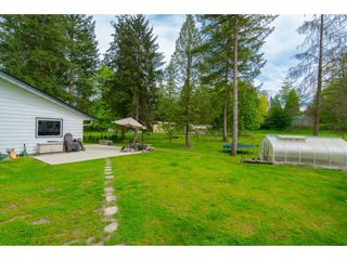 Photo 15: 23864 64 Avenue in Langley: Salmon River House for sale : MLS®# R2356393