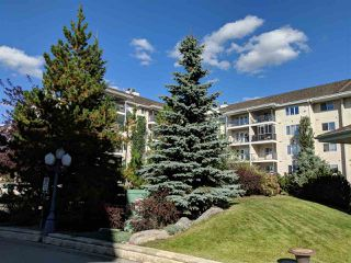 Photo 3: 116 237 YOUVILLE Drive E in Edmonton: Zone 29 Condo for sale : MLS®# E4130102