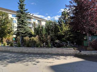 Photo 2: 116 237 YOUVILLE Drive E in Edmonton: Zone 29 Condo for sale : MLS®# E4130102