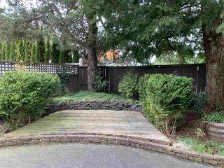 Photo 8: 9234 115 Street in Delta: Annieville House for sale (N. Delta)  : MLS®# R2359572