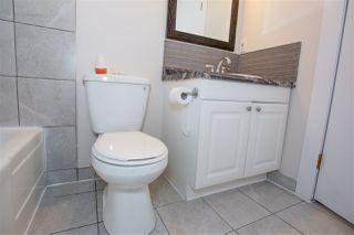 Photo 10: 11817 44 Street in Edmonton: Zone 23 House for sale : MLS®# E4161314