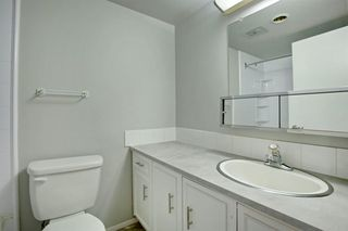 Photo 24: 209 315 HERITAGE Drive SE in Calgary: Acadia Apartment for sale : MLS®# A1033395