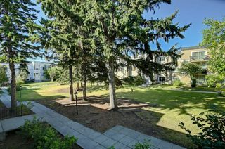 Photo 30: 209 315 HERITAGE Drive SE in Calgary: Acadia Apartment for sale : MLS®# A1033395