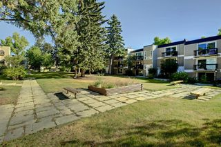 Photo 3: 209 315 HERITAGE Drive SE in Calgary: Acadia Apartment for sale : MLS®# A1033395