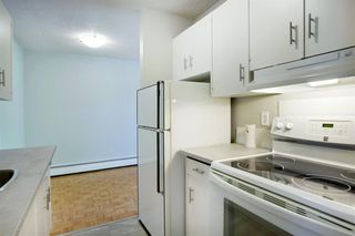 Photo 14: 209 315 HERITAGE Drive SE in Calgary: Acadia Apartment for sale : MLS®# A1033395