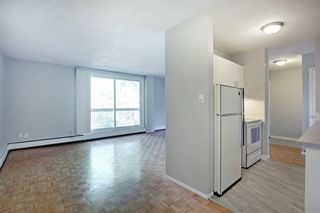 Photo 10: 209 315 HERITAGE Drive SE in Calgary: Acadia Apartment for sale : MLS®# A1033395