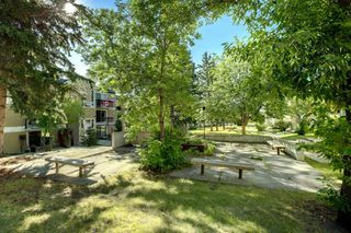 Photo 29: 209 315 HERITAGE Drive SE in Calgary: Acadia Apartment for sale : MLS®# A1033395