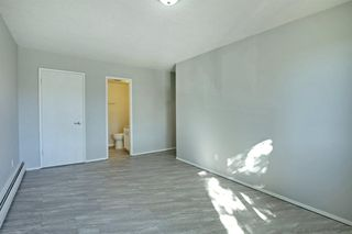Photo 18: 209 315 HERITAGE Drive SE in Calgary: Acadia Apartment for sale : MLS®# A1033395
