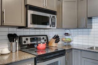 Photo 8: 373 2233 34 Avenue SW in Calgary: Garrison Woods Apartment for sale : MLS®# A1047848