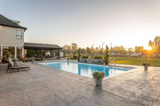 """Photo 17: 687 204 Street in Langley: Campbell Valley House for sale in """"CAMPBELL VALLEY"""" : MLS®# R2525561"""