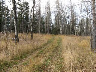 Photo 4: 3 miles east of Sundre in SUNDRE: Rural Mountain View County Rural Land for sale : MLS®# C3590774