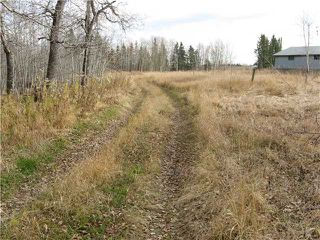 Photo 6: 3 miles east of Sundre in SUNDRE: Rural Mountain View County Rural Land for sale : MLS®# C3590774