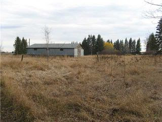 Photo 7: 3 miles east of Sundre in SUNDRE: Rural Mountain View County Rural Land for sale : MLS®# C3590774