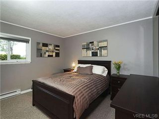 Photo 8: 8 864 Swan St in VICTORIA: SE Swan Lake Row/Townhouse for sale (Saanich East)  : MLS®# 696019