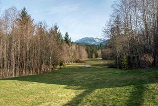 "Photo 18: 19 40750 TANTALUS Road in Squamish: Tantalus Townhouse for sale in ""MEIGHAN CREEK"" : MLS®# R2038882"