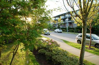 Photo 16: 106 15368 17A Avenue in Surrey: King George Corridor Condo for sale (South Surrey White Rock)  : MLS®# R2062666