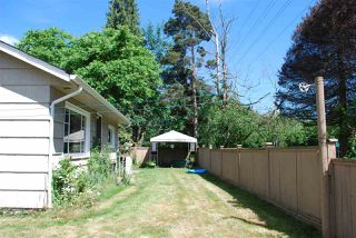 Photo 5: 12021 250 Street in Maple Ridge: Websters Corners House for sale : MLS®# R2077145