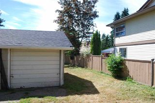 Photo 8: 12021 250 Street in Maple Ridge: Websters Corners House for sale : MLS®# R2077145
